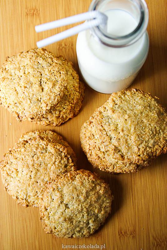 ciasteczka owsiane (35)