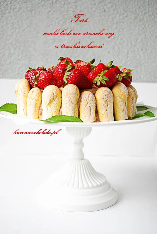 tort (21)kopia