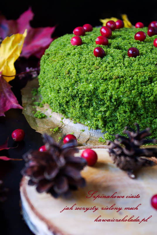 ciasto leśny mech (22)