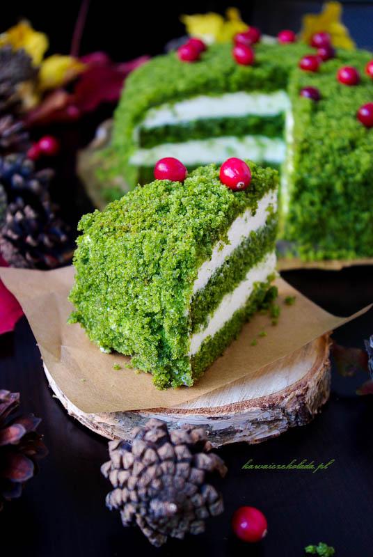 ciasto leśny mech (93)