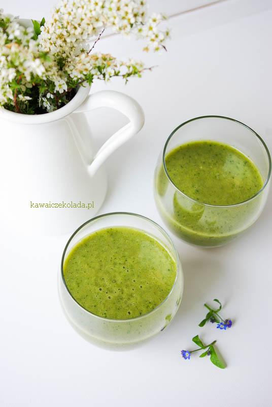 smoothie z zieloną herbatą (22)
