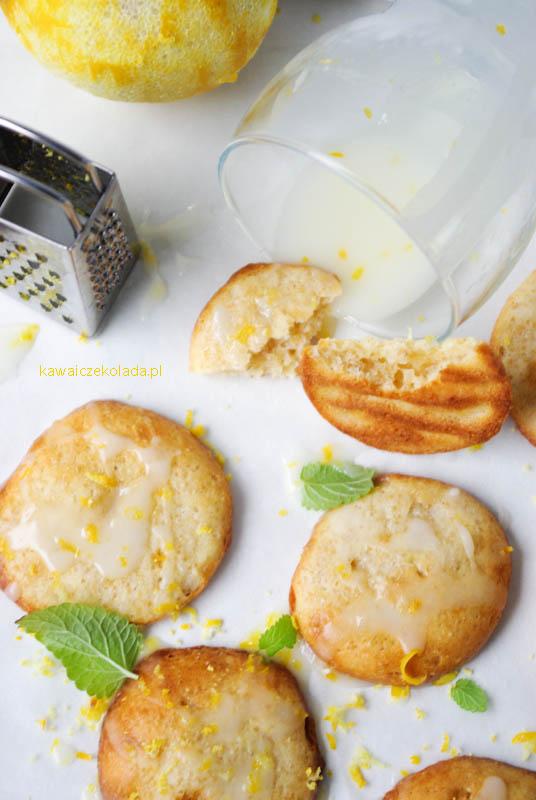 ciasteczka-amarantusowe-24